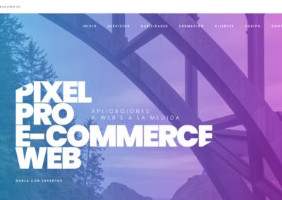 Diseño web Pixelpro Studio