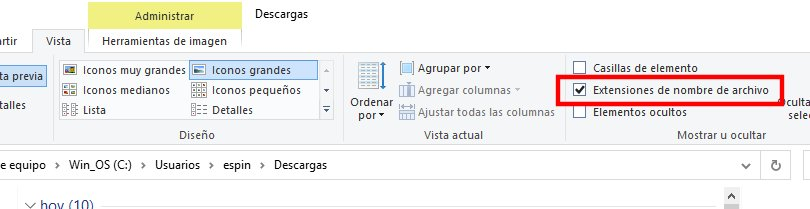 Activar ver extensiones de archivos